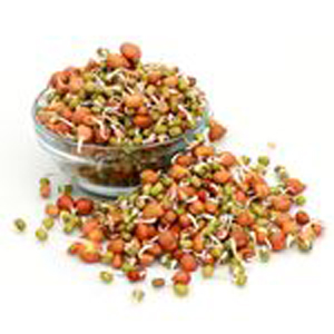 Sprouts Mixed Gram